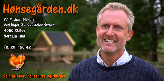 Michael Mønster, Hønsegården.dk, Hønsemichael, Hønse Michael