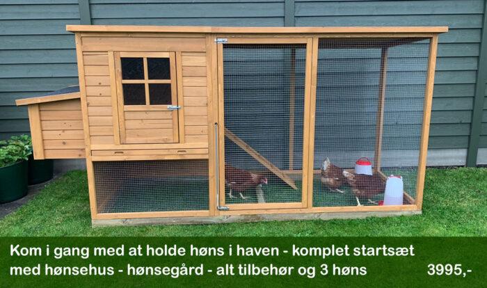 Hønsehus med gård