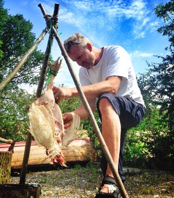 Slagtning af høns