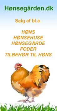 Hønsegården - høns og tilbehør